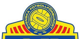 sweden team logo